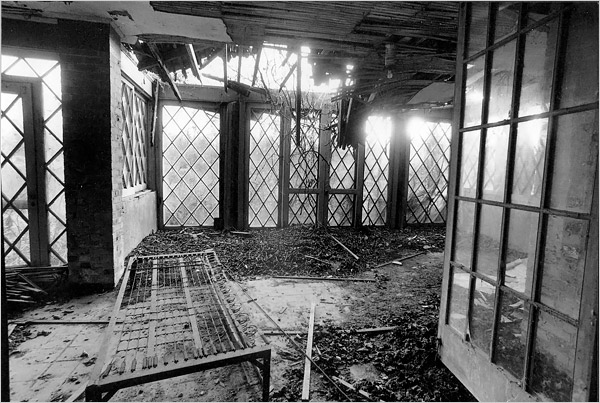 rior to restoring the house and hiring Victoria Fensterer to reinvent the gardens, Ms. Quinn arranged for photographs to be taken. This never-before-seen shot shows a sunroom with doors leading outside, where years of neglect had hidden the low grey cement walls that gave Grey Gardens its name.
