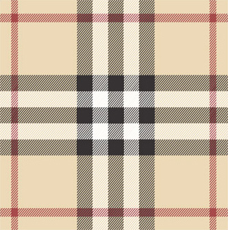 burberry check plaid