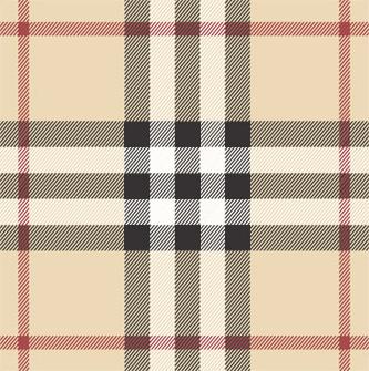 burberry check plaid