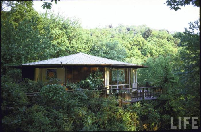 Summer home made from redwood panels perched on stilts among treetops-- Ashville, NC 1970.