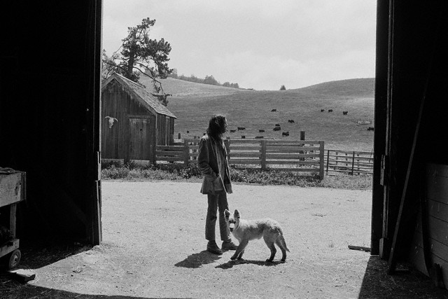 June 1971, California --- Neil Young at his northern California ranch with his dog. --- Image by © Henry Diltz