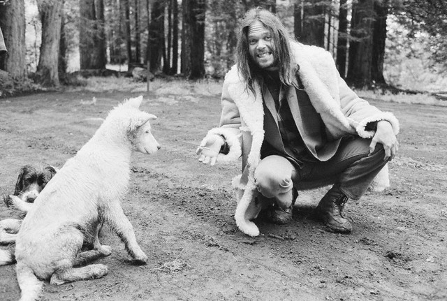 May 27th, 1971 --- Neil Young jokingly offers his dog a toke. --- Image by © Henry Diltz