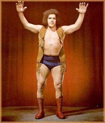 andre the giant leather vest