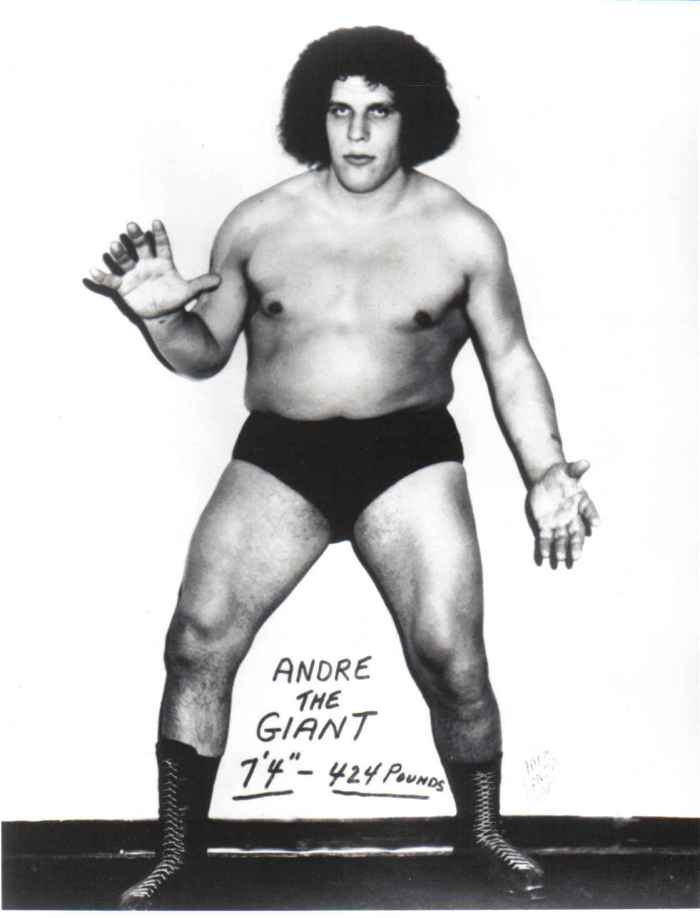 Andre The Giant Daughter