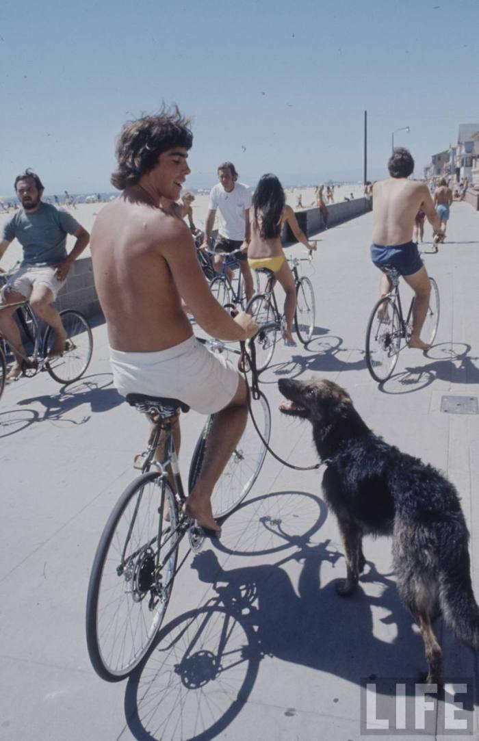 Cruisin' with man's best friend in retro California.