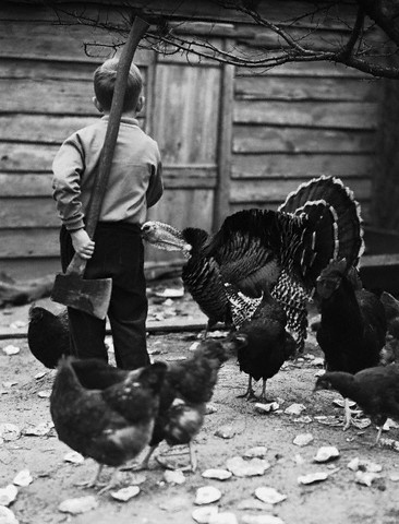 """Here turkey, turkey..."" --circa 1930s."
