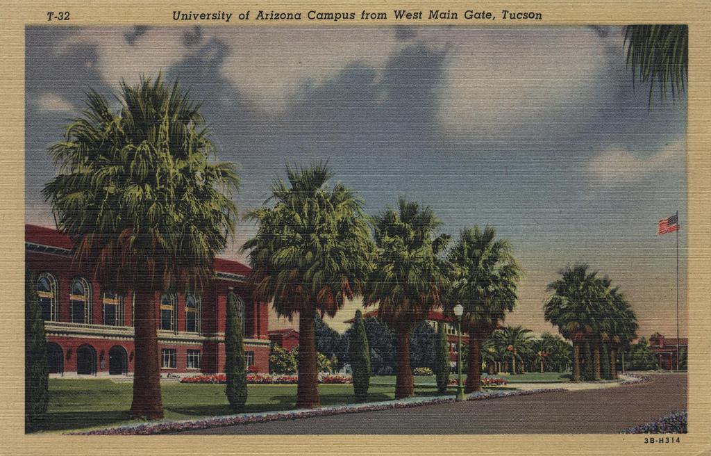 university of arizona campus. University of Arizona Campus