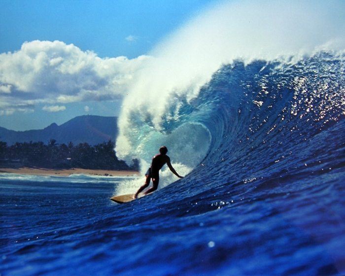 THE PHOTOGRAPHY OF LEROY GRANNIS