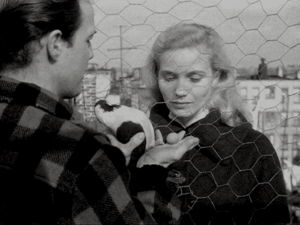 an analysis of elia kazans direction of on the waterfront The film made use of extensive on-location street scenes and waterfront  in known for his creative stage direction, elia kazan was born  elia kazans.