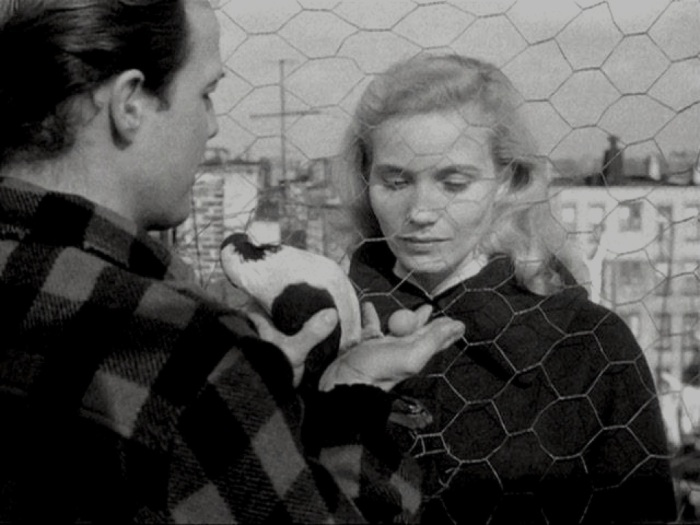 edie doyle on the waterfront essay On the waterfront blu  to a corrupt union and his loyalty to edie for more about on the waterfront and the on the  - in this video essay,.