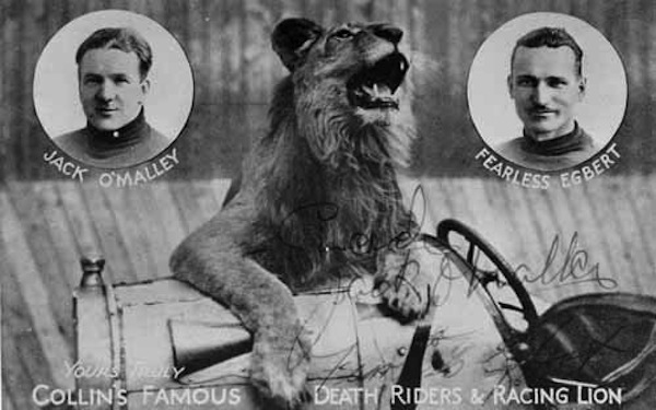 Fearless Egbert Collins Famous Death Riders Monarch Racing Lion.