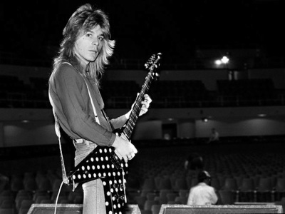 randy rhoads flying v