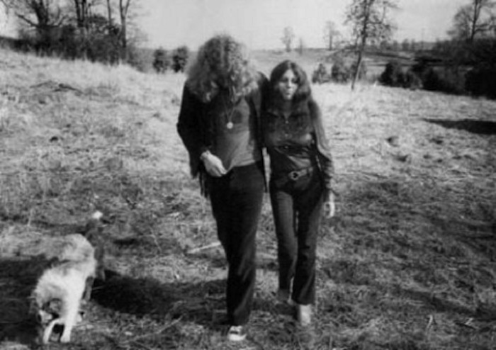 robert plant strider dog