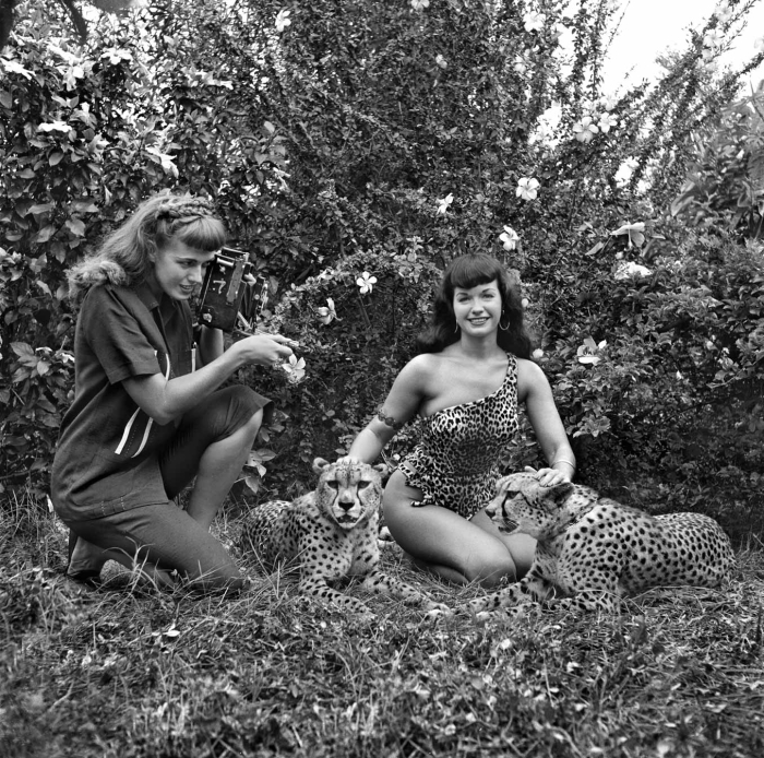 Bunny Yeager Bettie Page Cheetahs