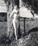 betty brosmer tree pinup