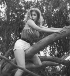 betty brosmer tree