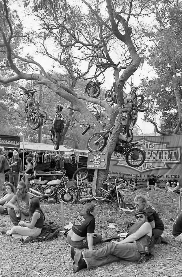 pulsating paula 1970s 1980s harley motorcycles in trees