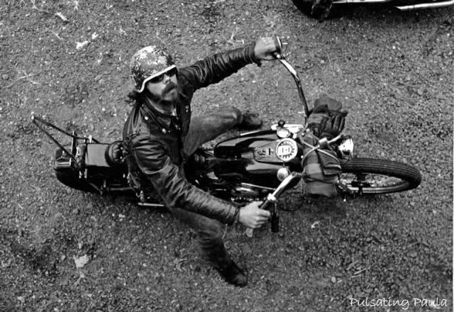 pulsating paula harley biker beard helmet