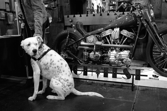2015_portland_one_motorcycle_show_ashley_smalley