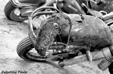 PULSATING PAULA DAYTONA BEACH BIKE WEEK RAT BIKE HARLEY 1980S