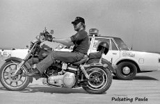 PULSATING PAULA DAYTONA BIKE WEEK 1980S HARLEY COP MOTORCYCLE