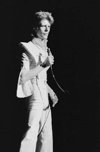 ELVISE-david-bowie-ziggy-stardust-white-jump-suit